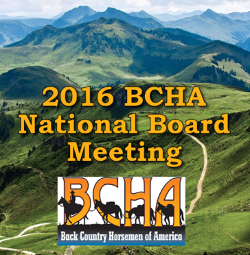 BCHA 2016 National Board Meeting