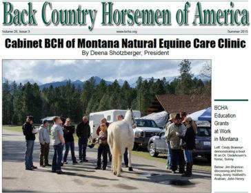Newsletter, Summer of 2015 Issue