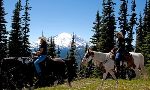 Help BCHA secure more horseback riding opportunities at Mount Rainer National Park