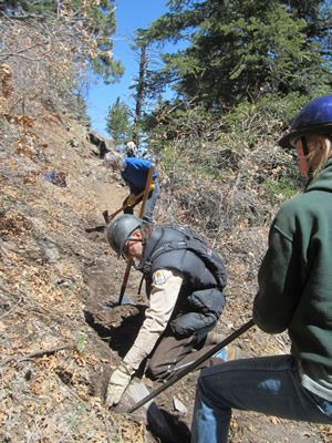 April 2013. Tread work (widening) on Spruce Trail in the Manzano Mountains, NM. This section of trail tends to slough off the mountain side. It is nice when hikers and equestrians avoid that fate.