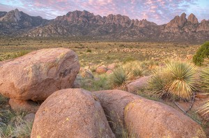 BCH Applaud Designation of Organ Mountain-Desert Peaks National Monument