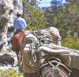 Take Action: Weigh in on Yosemite Wilderness Plan