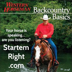Kinsey Horsemanship